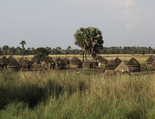 RURAL (AGRICULTURAL) TOURISM